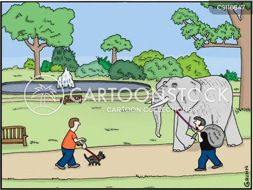 zoo keeper cartoon