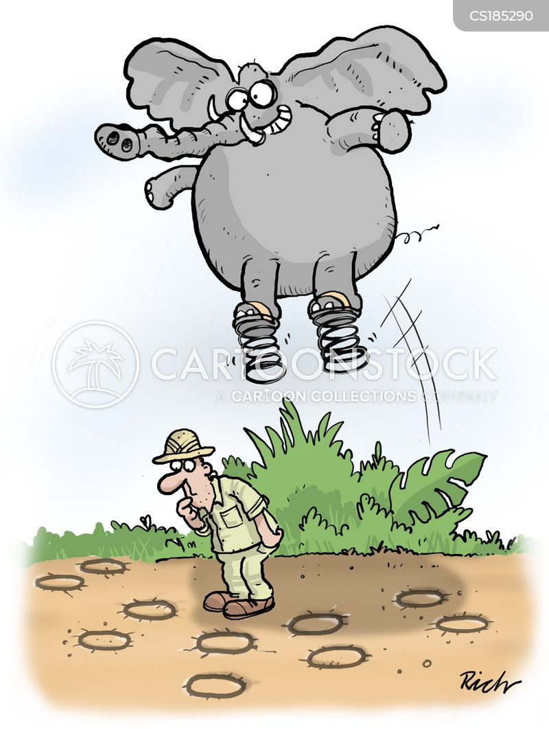 animal track cartoon