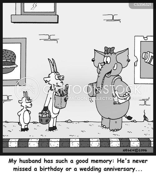 elephant memory cartoon