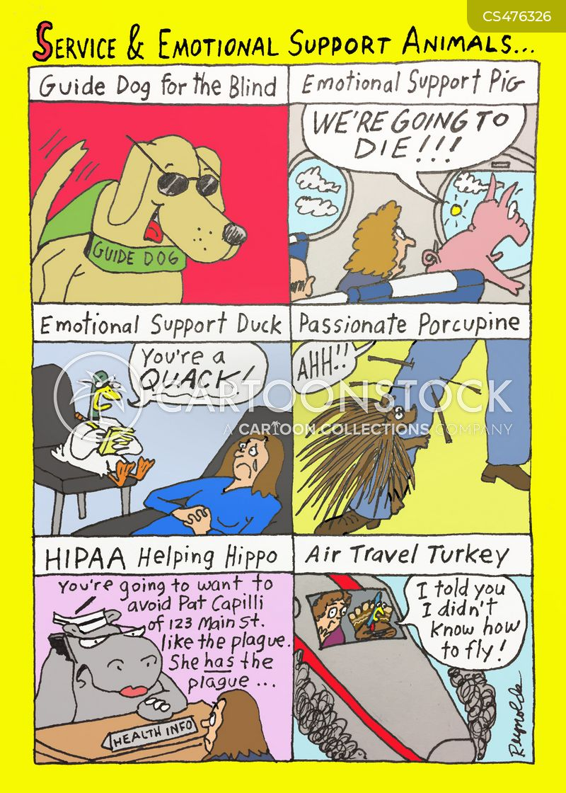 Image of: Funny Emotional Support Animal Cartoon Of 15 Washington Post Emotional Support Animal Cartoons And Comics Funny Pictures From