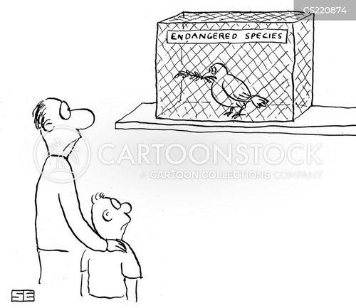 endangered bird cartoon