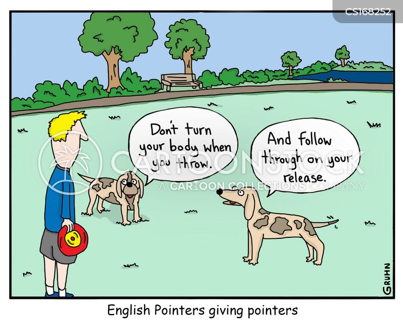 english pointers cartoon