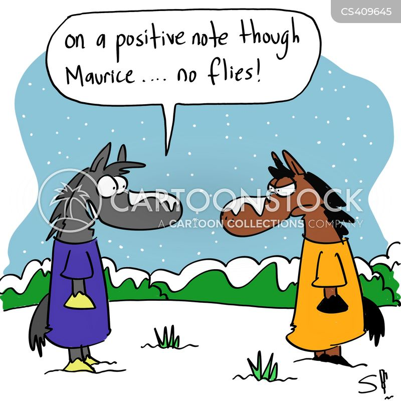 Horse Rugs Cartoons And Comics Funny Pictures From Cartoonstock