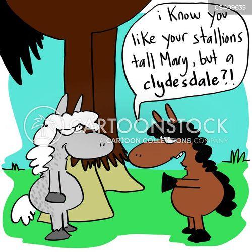 horse breed cartoon