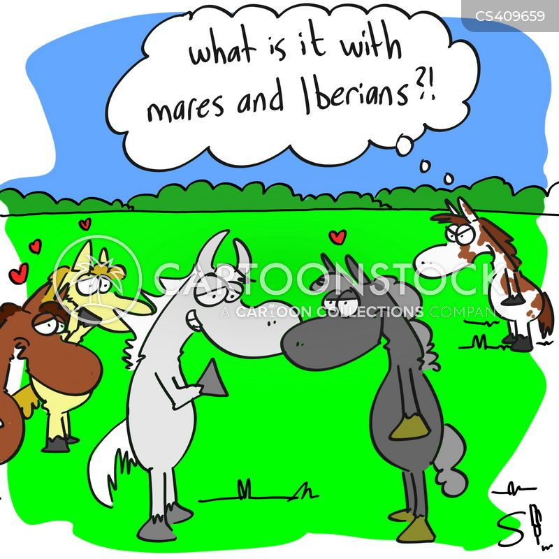 mares cartoon