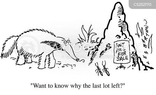 ant eaters cartoon