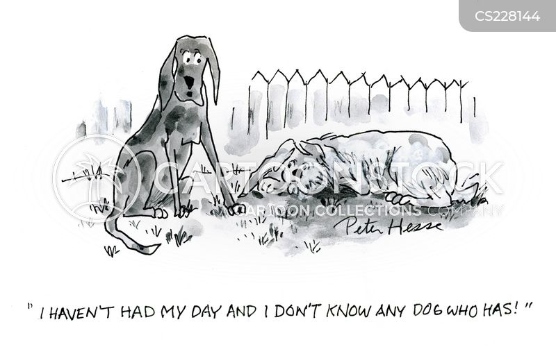 every dog has its day cartoon