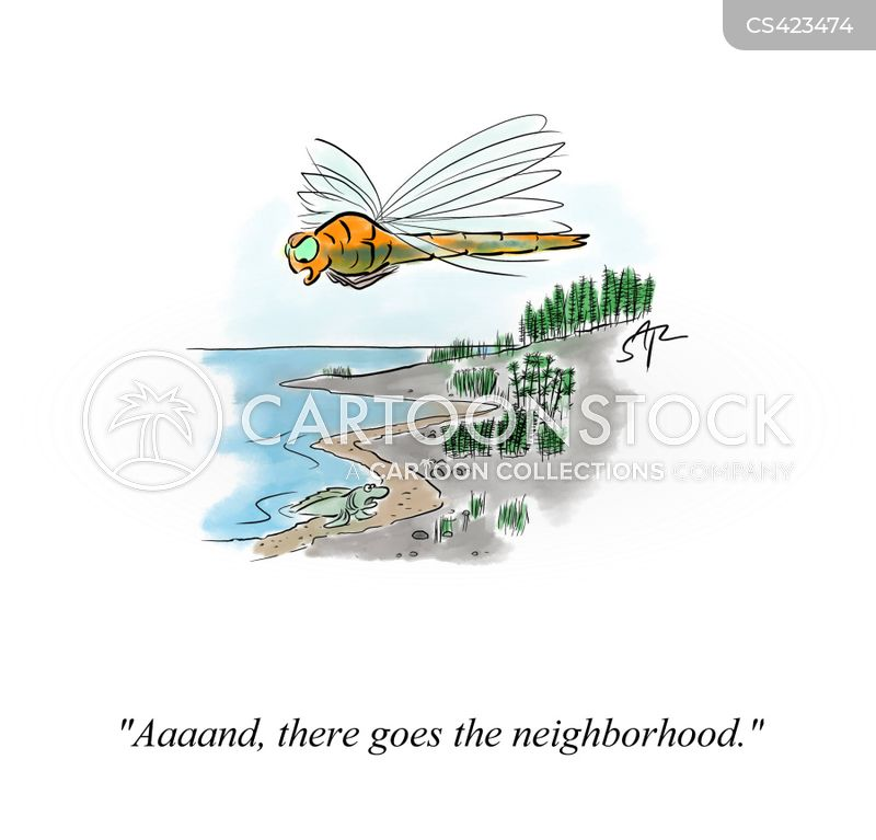 bad neighborhoods cartoon