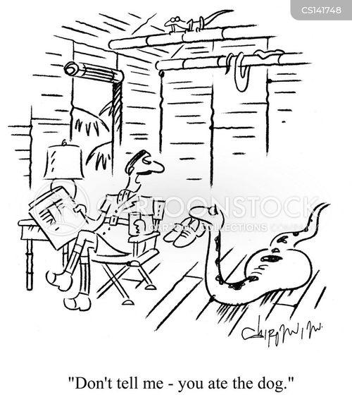 constrictors cartoon