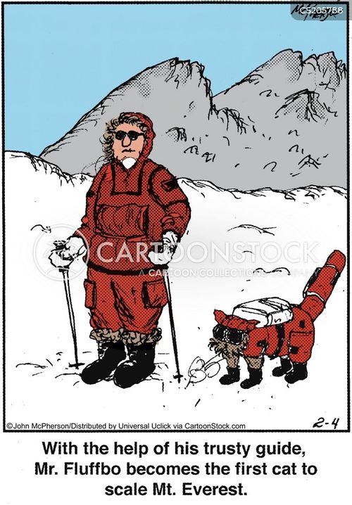 mountaineering cartoon