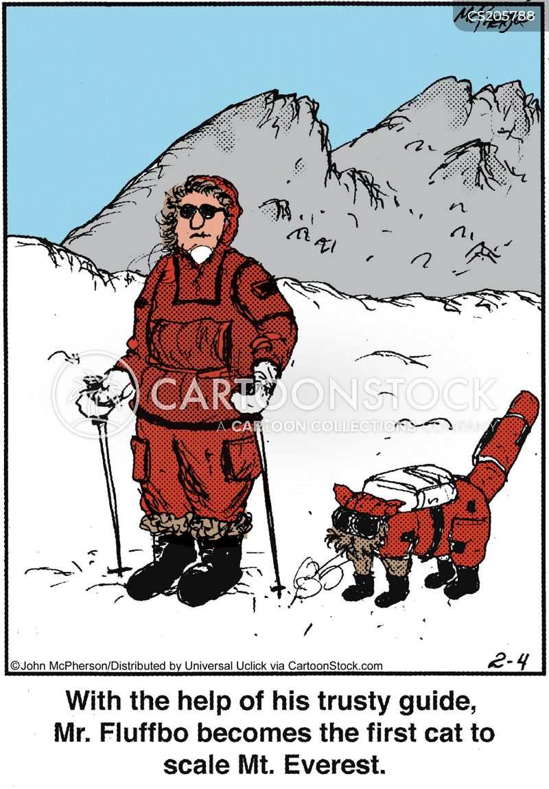 everest cartoon
