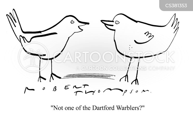 warblers cartoon