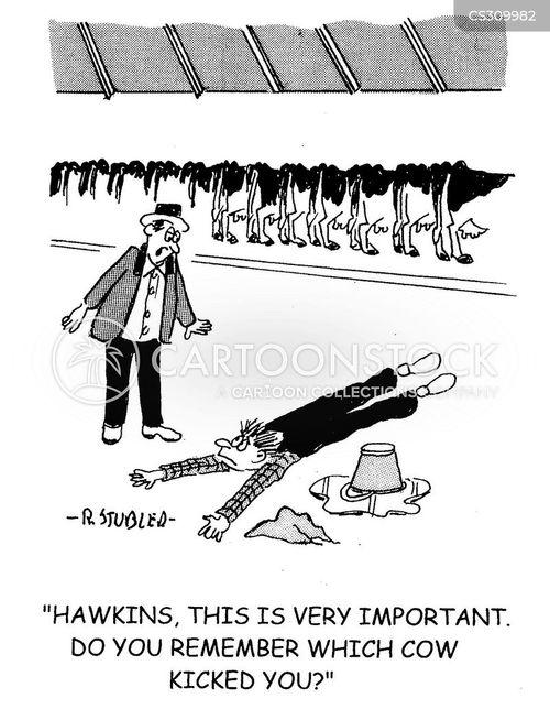 milking sheds cartoon