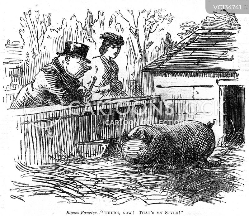 Swine cartoons, Swine cartoon, funny, Swine picture, Swine pictures, Swine image, Swine images, Swine illustration, Swine illustrations