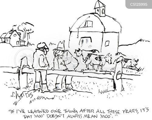 Barn Animals Cartoon 12 Of 26