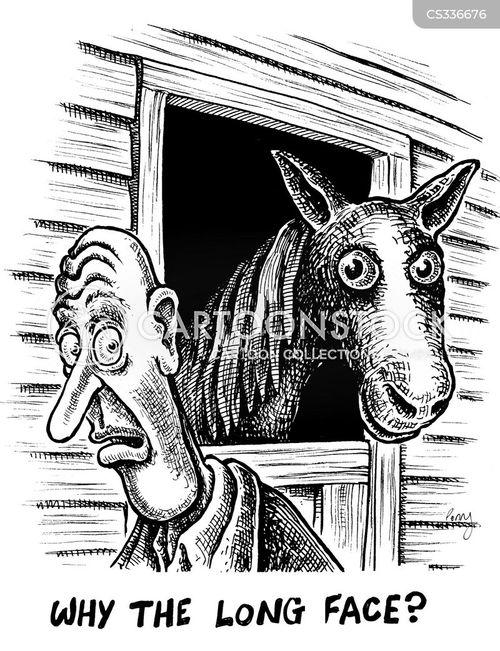 horse faced cartoon