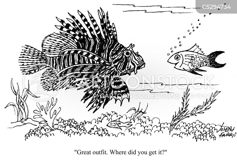 exotic fishes cartoon