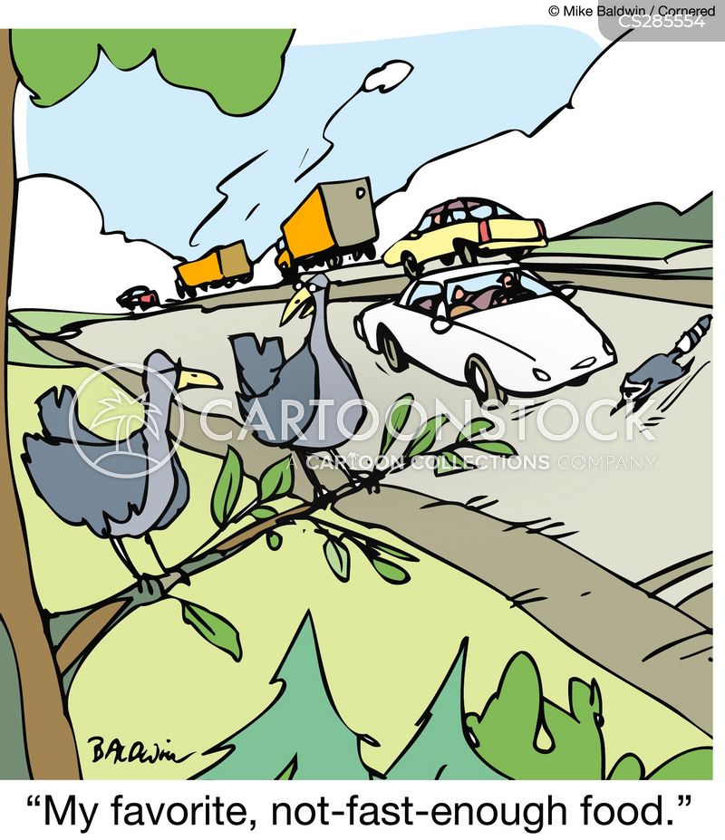 Road Fauna cartoons, Road Fauna cartoon, funny, Road Fauna picture, Road Fauna pictures, Road Fauna image, Road Fauna images, Road Fauna illustration, Road Fauna illustrations