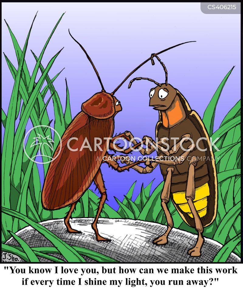 fireflies cartoon
