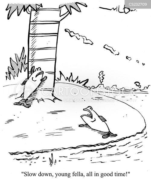 amphibious cartoon