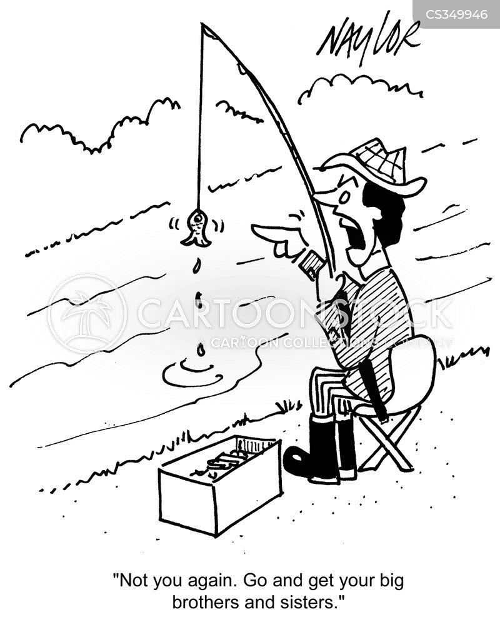 minnows cartoon