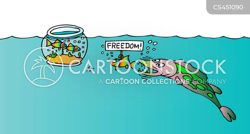 freed cartoon