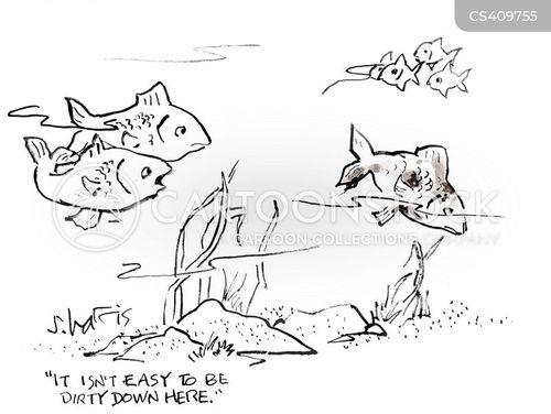sea-life cartoon