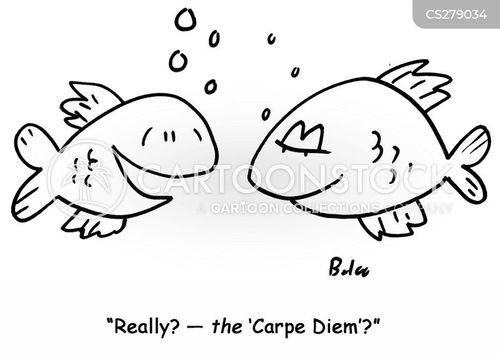 carpe cartoon