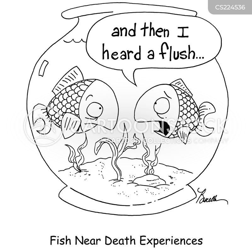 flush fish down toilet cartoon