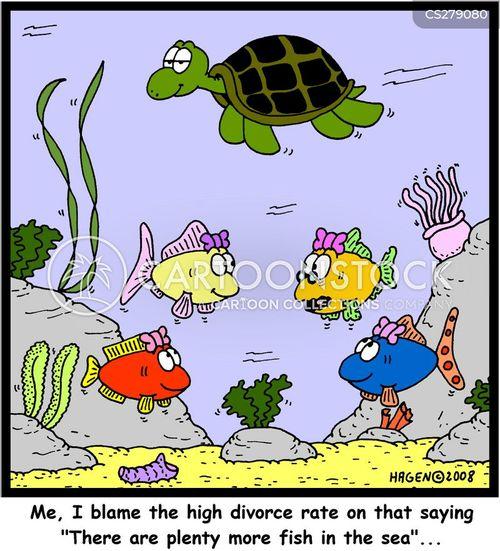 divorce rate cartoon