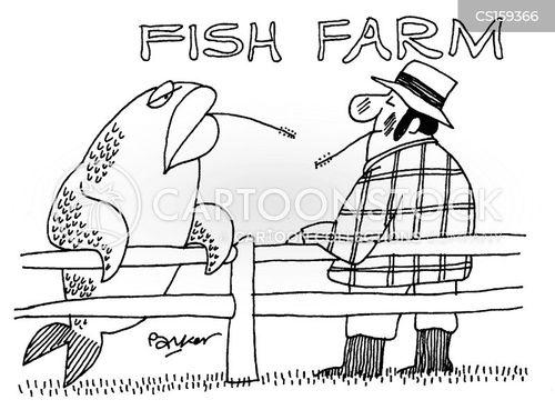 salmon farm cartoon
