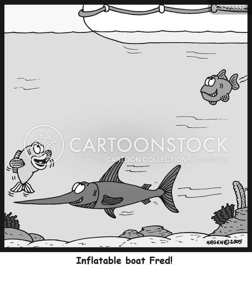 dinghys cartoon
