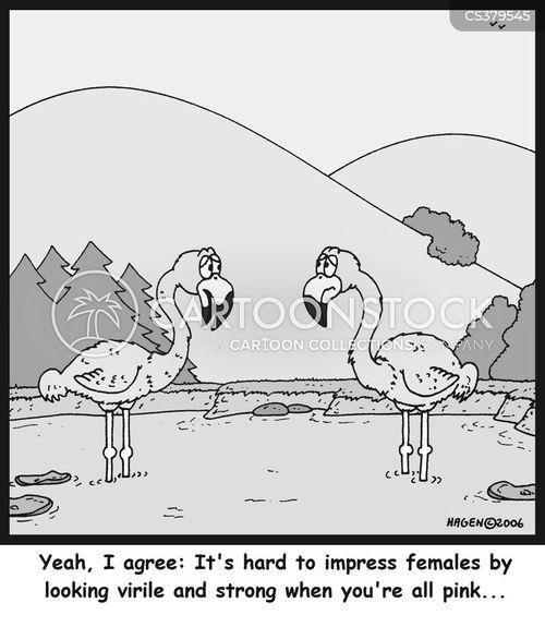 virile cartoon