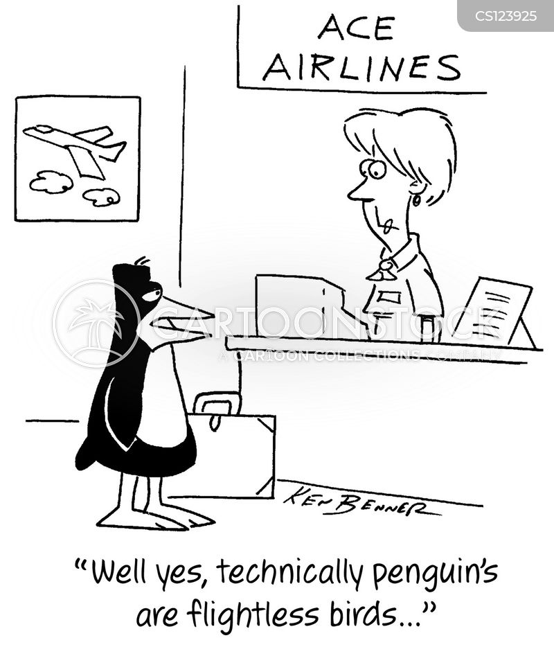 flightless bird cartoon