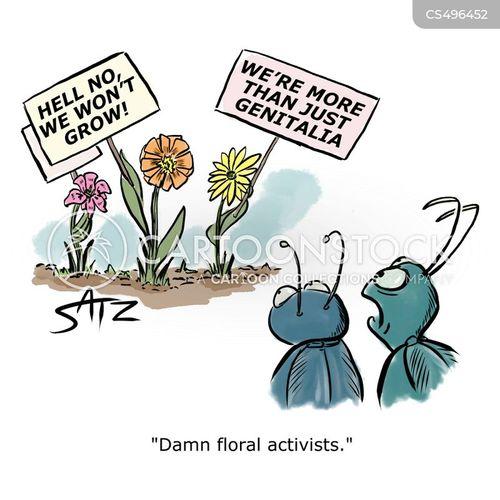 pollinated cartoon