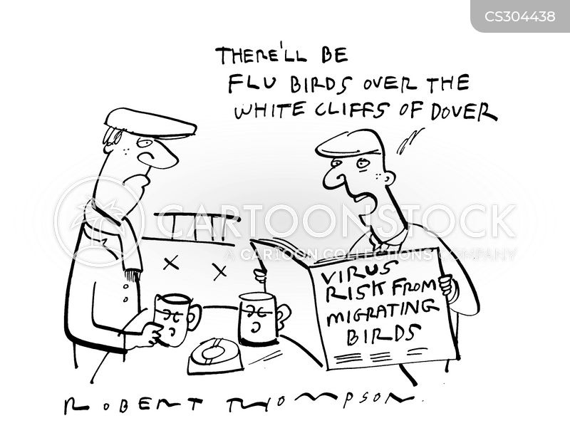 Funny Cartoons Birds Bird Flu Virus Cartoon 2 of 2
