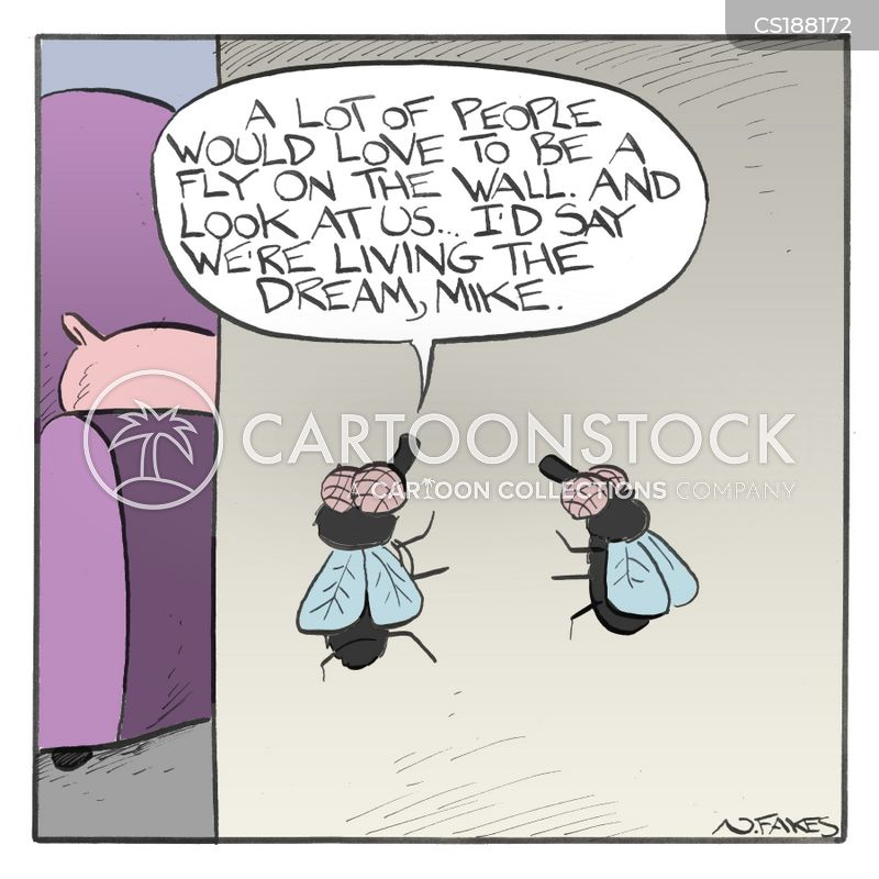 earwig cartoon