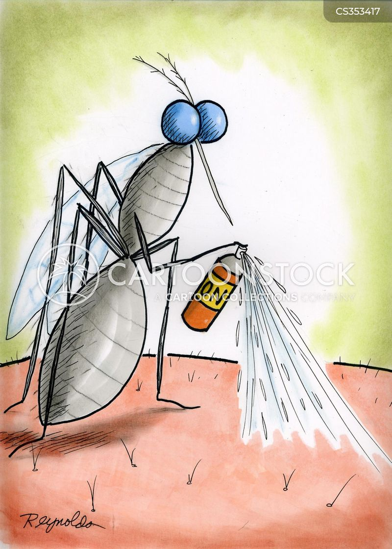 fly killer cartoon