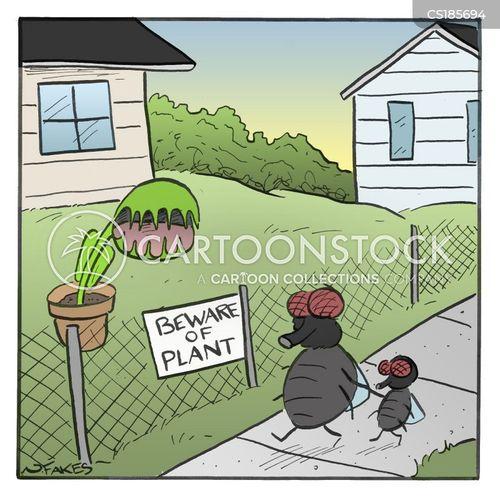 venus fly trap cartoon