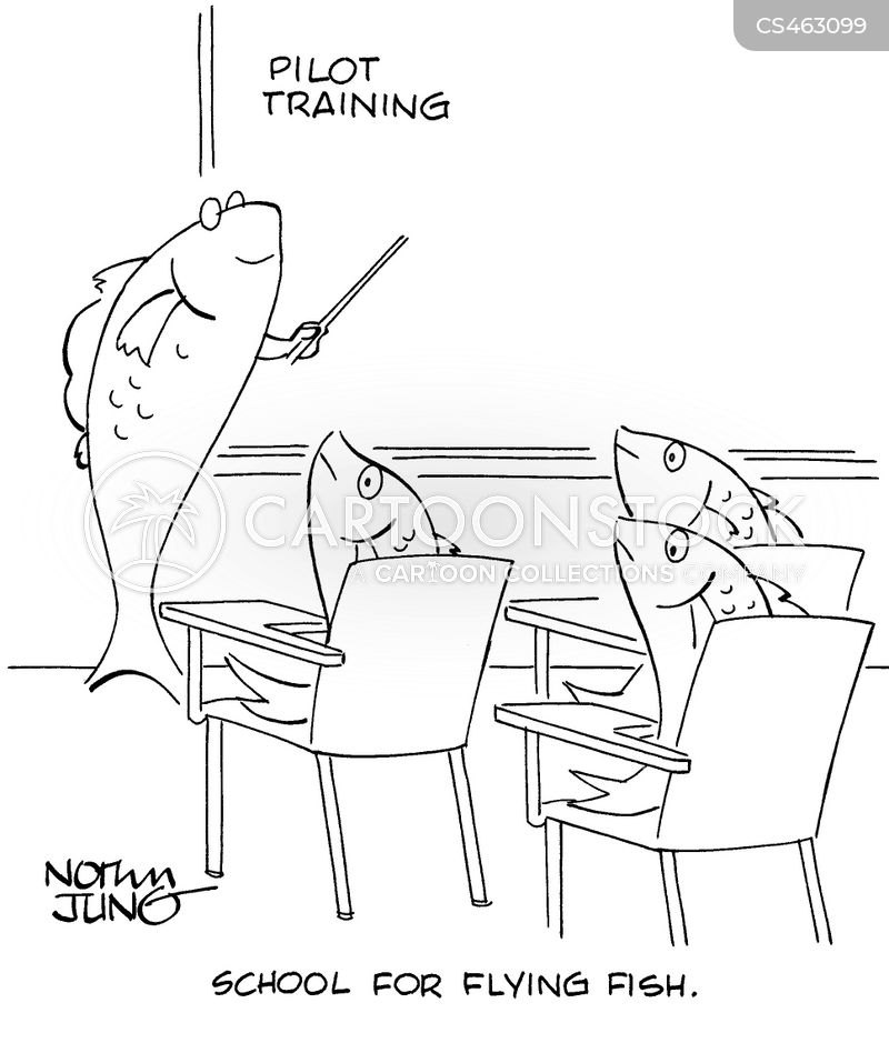 flying fishes cartoon