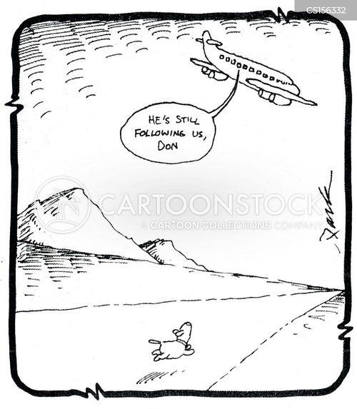 jumbo jet cartoon