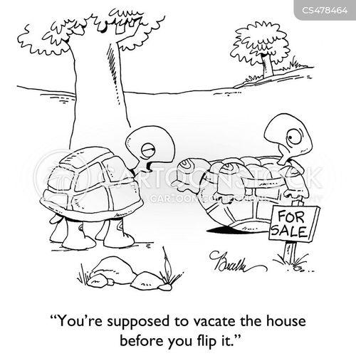 house flippers cartoon