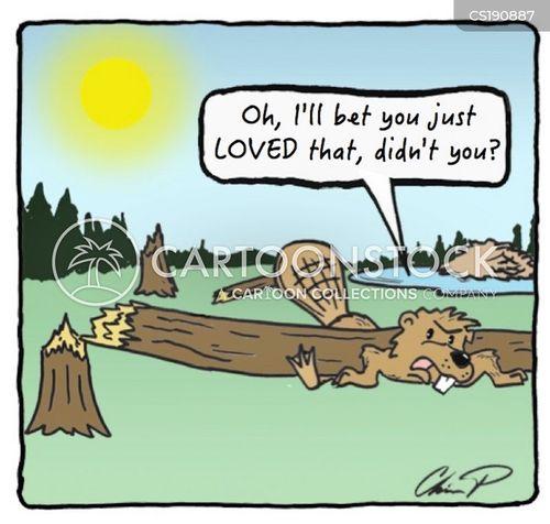 timber cartoon
