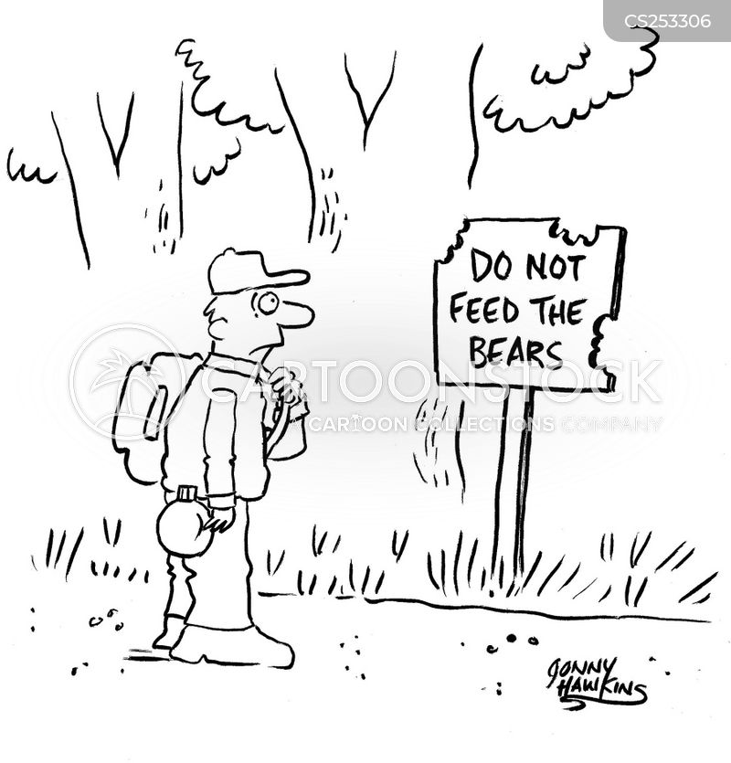 national forest cartoon