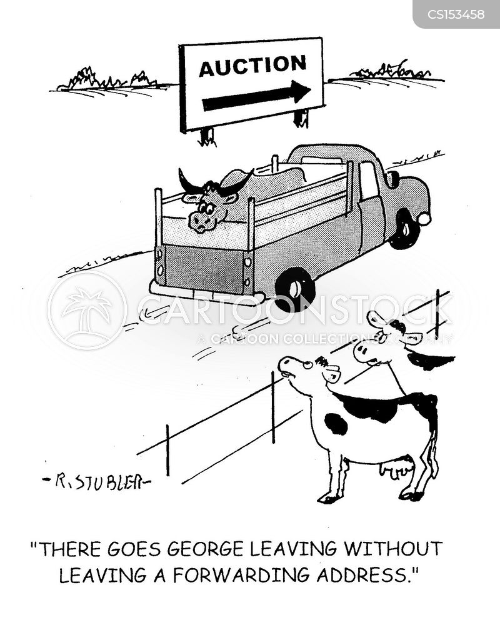 abattoir cartoon