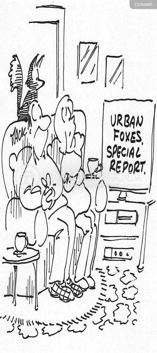 urban foxes cartoon