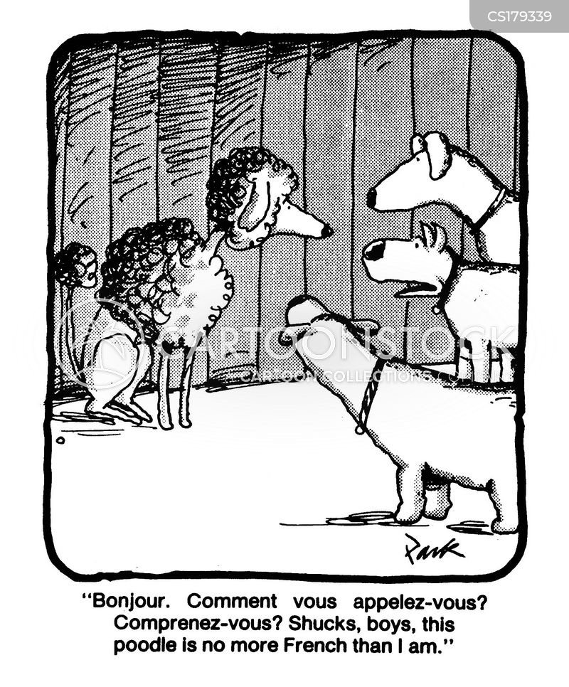 French Poodle cartoons, French Poodle cartoon, funny, French Poodle picture, French Poodle pictures, French Poodle image, French Poodle images, French Poodle illustration, French Poodle illustrations