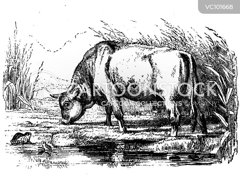 Cow cartoons, Cow cartoon, funny, Cow picture, Cow pictures, Cow image, Cow images, Cow illustration, Cow illustrations
