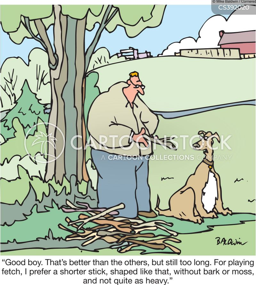 chasing a stick cartoon