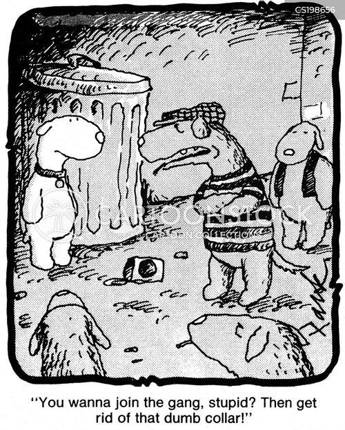 dog collar cartoon